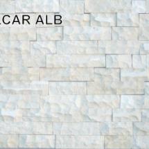 calcar_alb